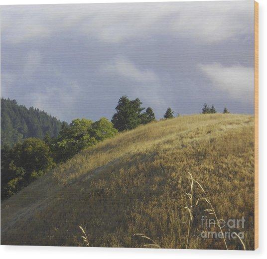 Mt. Tamalpais Study #1 Wood Print