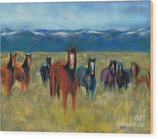 Mustangs In Southern Colorado Wood Print