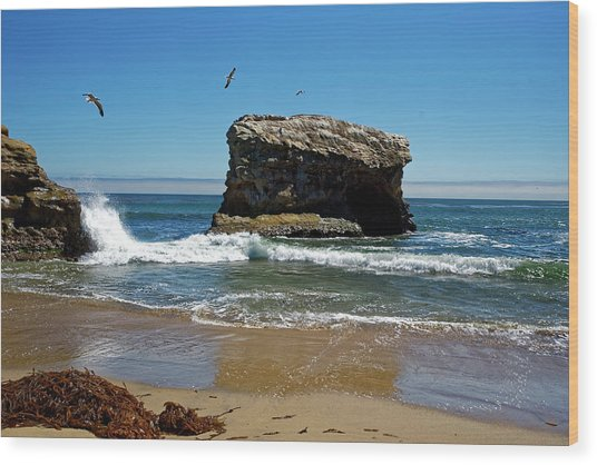 Natural Bridges State Park Wood Print