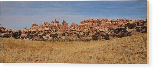 Needles At Canyonlands Wood Print
