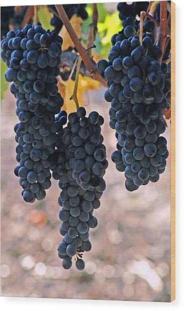 New Grapes Wood Print