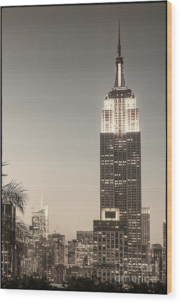 Wood Print featuring the photograph New York Empire State Building by Juergen Held