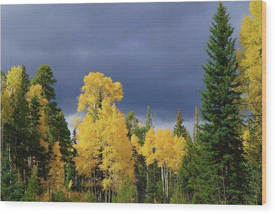 North Rim Fall  Wood Print