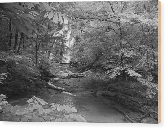 Oconee Station Waterfall  Wood Print