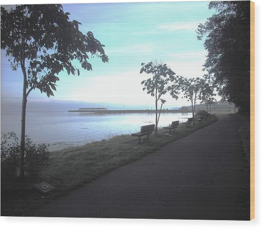 Olympic Discovery Trail Port Angeles Wood Print