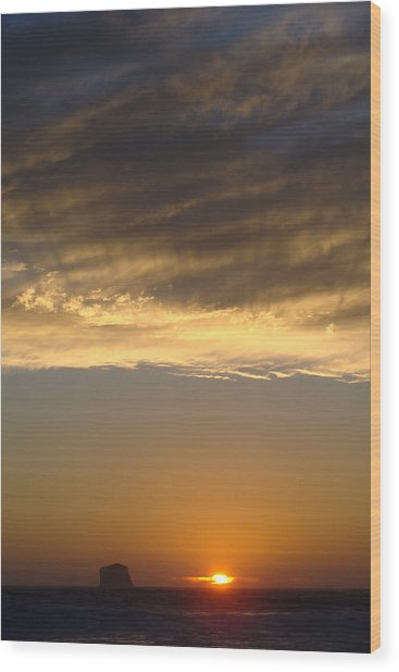 Olympic Sunset  Wood Print by Ty Nichols