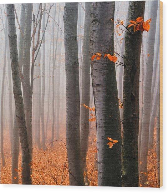 Orange Wood Wood Print