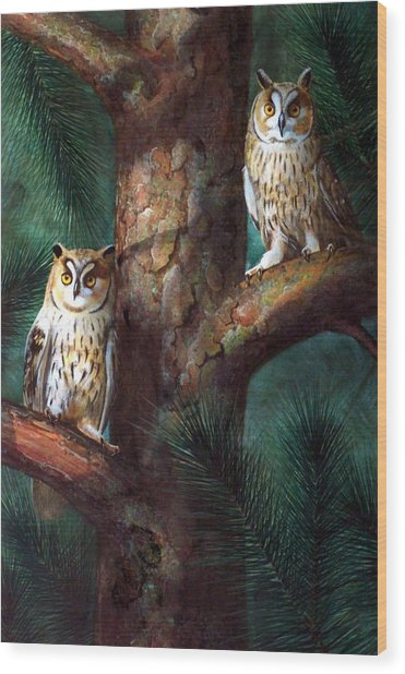 Owls In Moonlight Wood Print