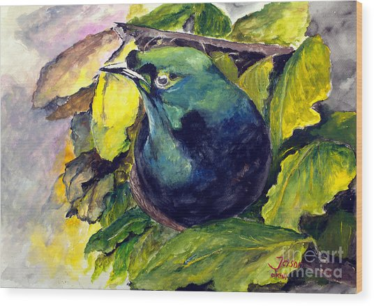 Paradise Bird Wood Print