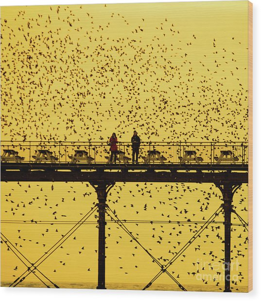 People On The Pier Sunset And Starlings In Aberystwyth Wales Wood Print