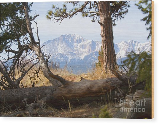 Pikes Peak And Trail To Bald Mountain Wood Print