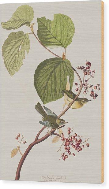 Pine Swamp Warbler Wood Print