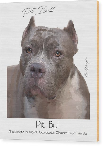 Pit Bull Poster Wood Print by Tim Wemple