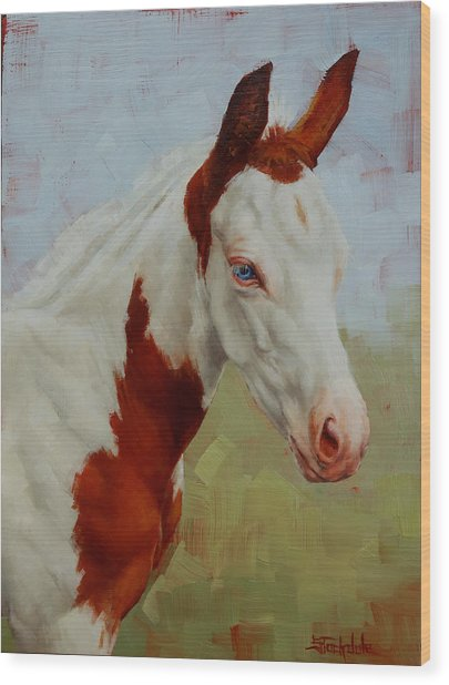 Pretty Baby-paint Foal Portrait Wood Print