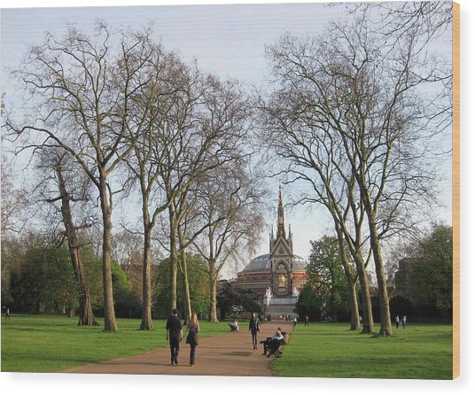 Prince Albert Hall And Memorial Wood Print by David L Griffin