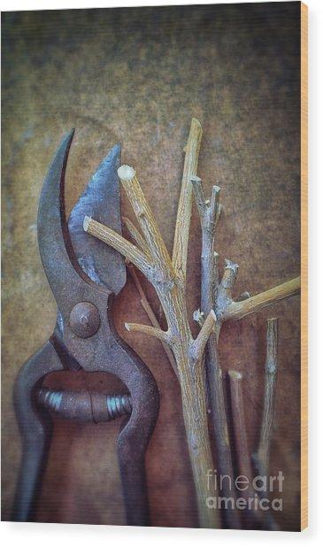 Pruning Scissors Wood Print