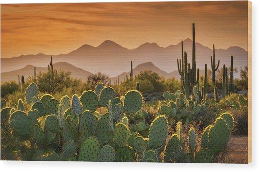 Pure Sonoran Gold  Wood Print
