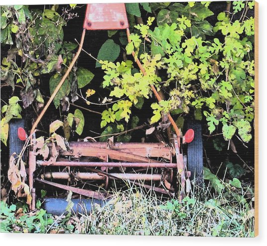 Push Mower Wood Print by Gary Everson