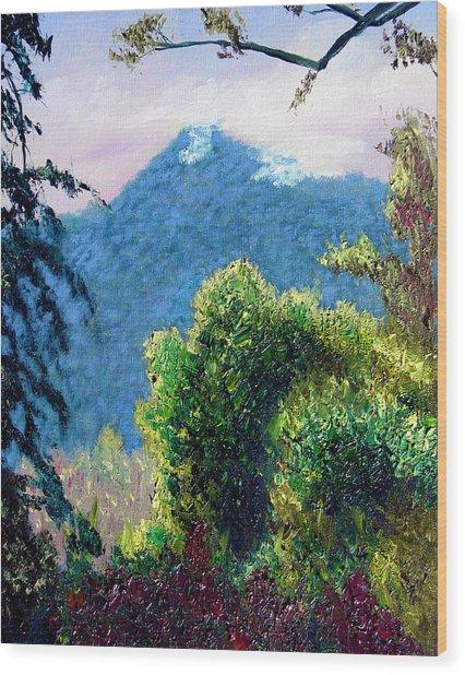 Rain Forrest Mountain Wood Print by Stan Hamilton
