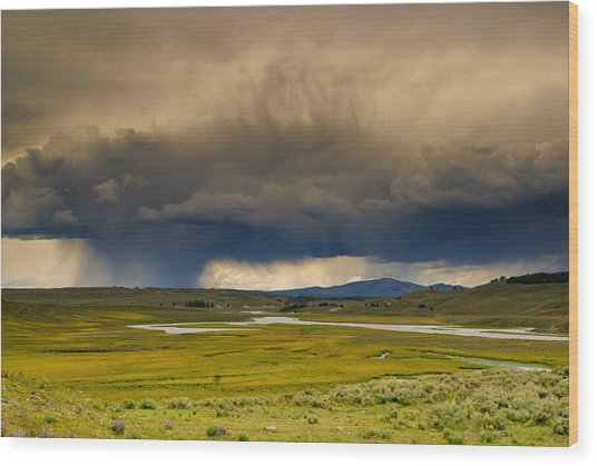 Rain Sky Wood Print by Patrick  Flynn