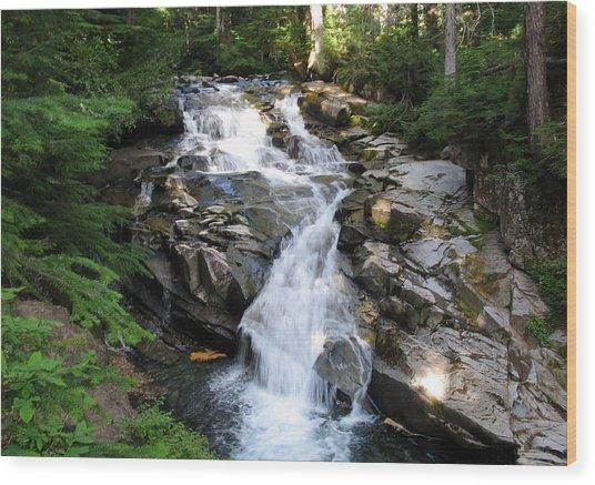 Rainier Waterfall Wood Print by Ty Nichols