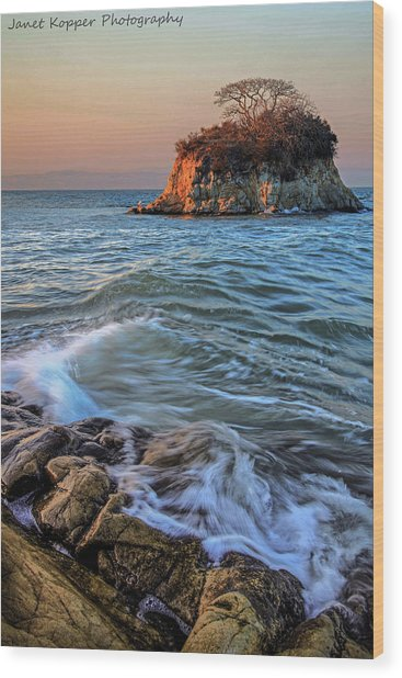 Rat Rock Island  Wood Print