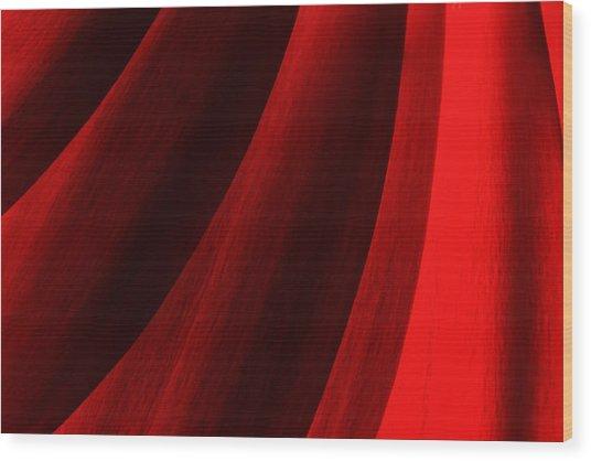 Red Chrysanthemum Dawn Rising Wood Print