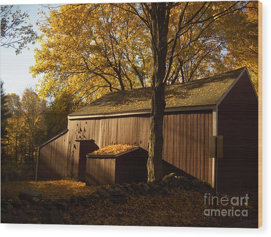 Red Barn At Dawn Wood Print