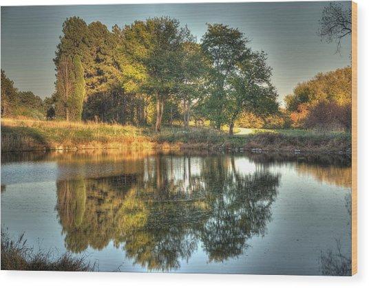 Reflections At Sunset Wood Print