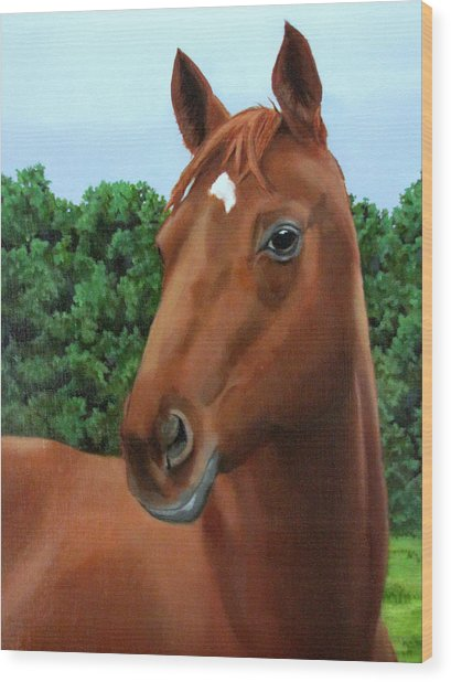 Retired Racer Wood Print
