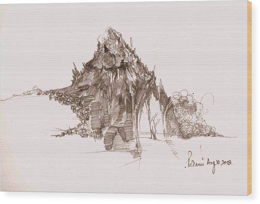 Rocks And Stones Wood Print by Padamvir Singh