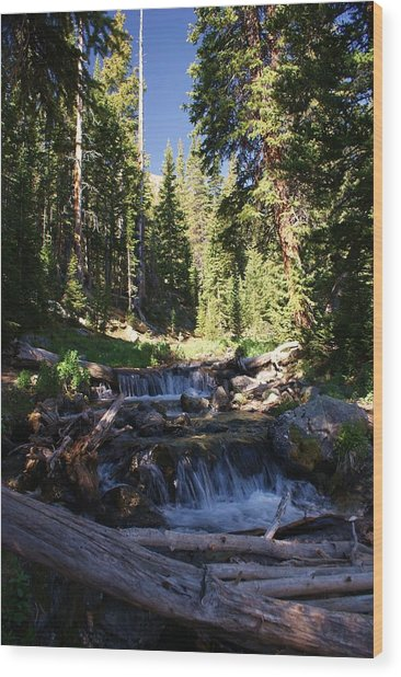 Rocky Mountain Summer Wood Print