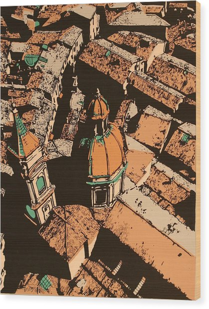 Roofs Of Bologna Wood Print by Biagio Civale