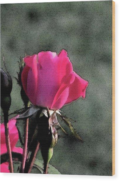 Rosebud Wood Print by Michele Caporaso