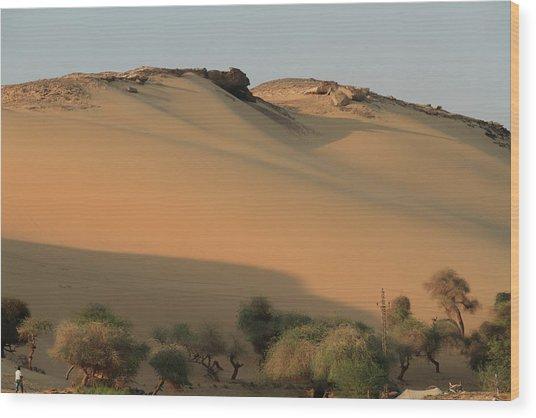 Sahara Wood Print