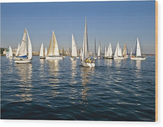 Sailboat Race Wood Print by Tom Dowd