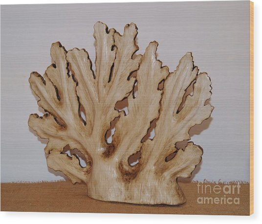 Sea Fan Wood Print