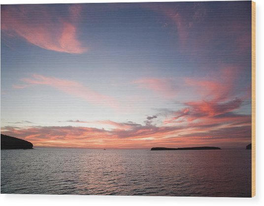 Sea Of Cortez Wood Print by Richard Steinberger