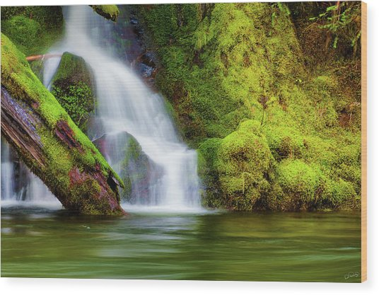 Whte Cascade Wood Print