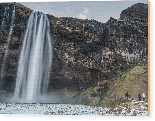 Wood Print featuring the photograph Seljalandsfoss Waterfalls View In Winter, Iceland by Pradeep Raja PRINTS