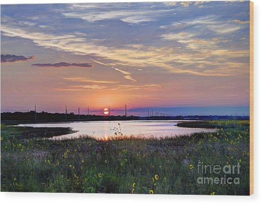 September Sunrise Over The Baker Wetlands Wood Print