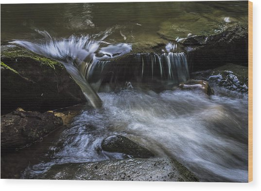 Serenity Wood Print by Denise Clark