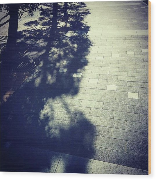 #shadow #光と影 Wood Print by Bow Sanpo