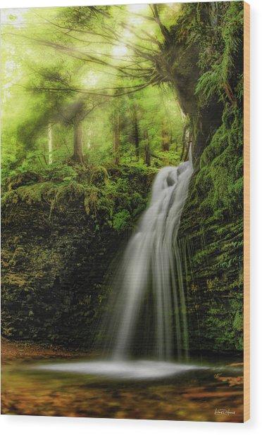 Shadow Falls Wood Print by Leland D Howard