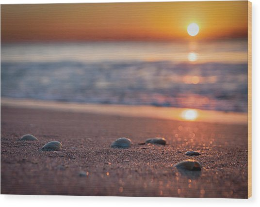 Shoreline Sunrise Wood Print
