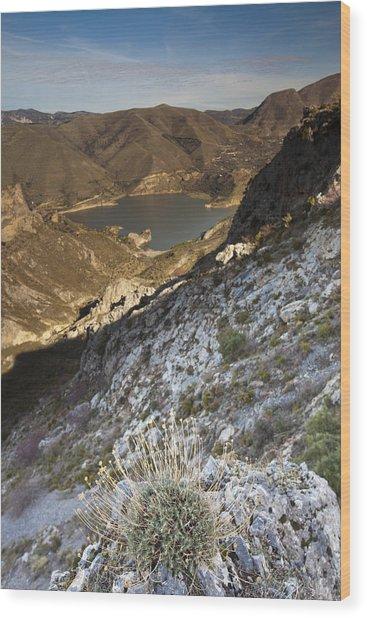 Sierra Nevada Wood Print by Andre Goncalves