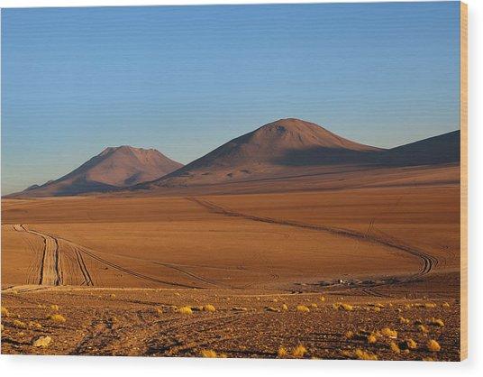 Siloli Desert Wood Print