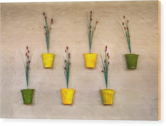 Six Flower Pots On The Wall Wood Print