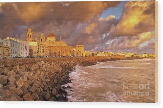 Skyline From Campo Del Sur Cadiz Spain Wood Print