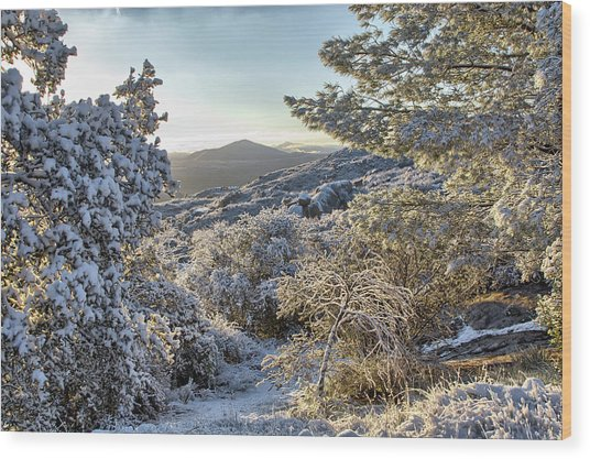 Snow At Sunrise 3 Wood Print by Peter Dyke